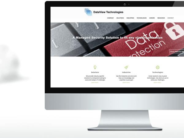 DataView Technologies